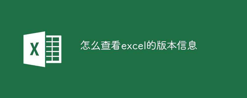 怎么查看excel的版本信息