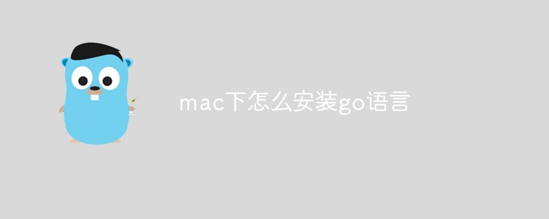 mac下怎么安装go语言