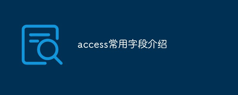 access常用字段介绍