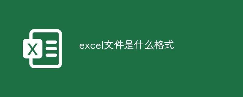 excel文件是什么格式