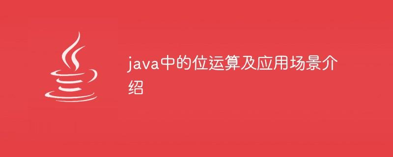 java中的位运算及应用场景介绍