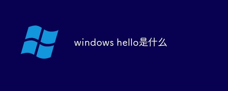 windows hello是什么