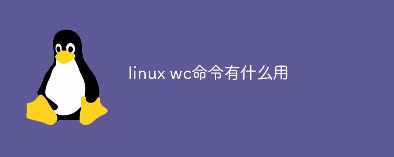 linux wc命令有什么用