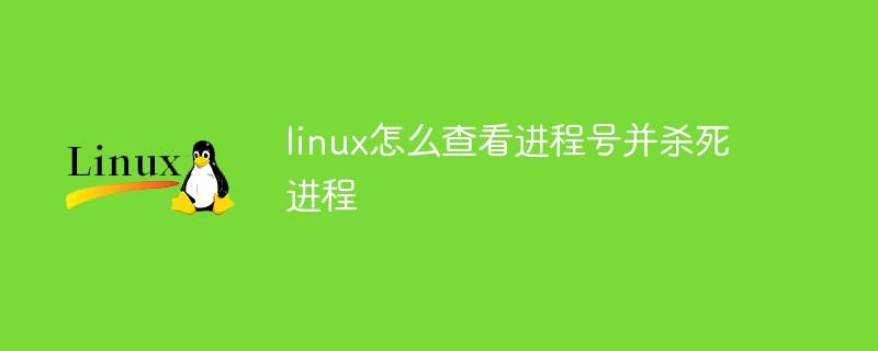 linux怎么查看进程号并杀死进程