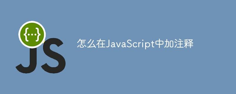 怎么在JavaScript中加注释
