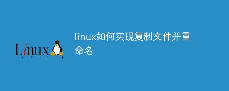 linux如何实现复制文件并重命名