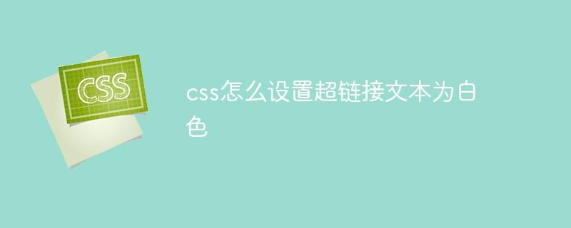 css怎么设置超链接文本为白色插图