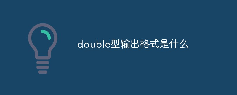 double型输出格式是什么