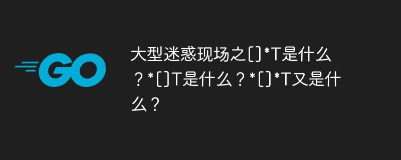 大型迷惑现场之[]*T是什么?*[]T是什么?*[]*T又是什么?