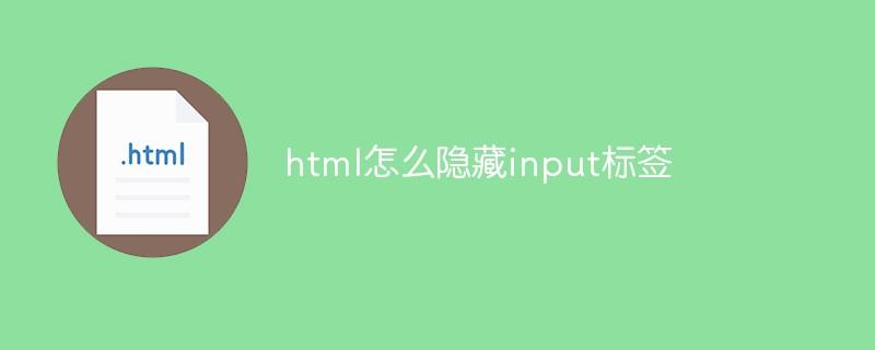 html怎么隐藏input标签