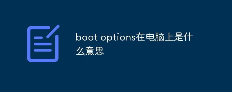 boot options在电脑上是什么意思
