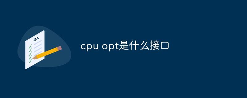 cpu opt是什么接口