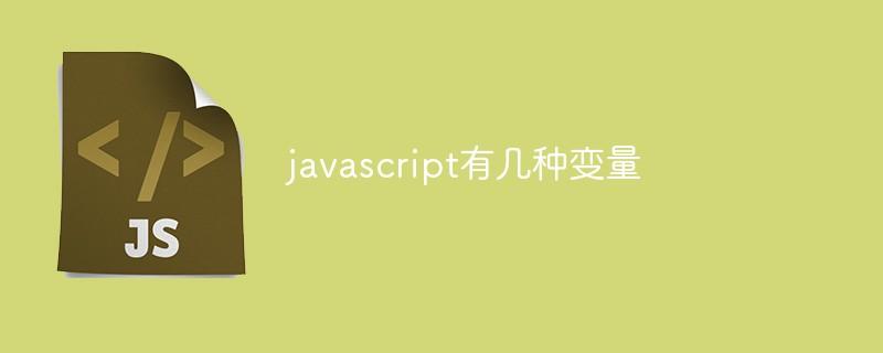 javascript有几种变量