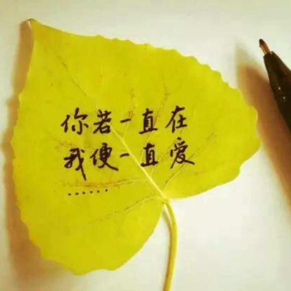 智慧互联网-赵桂福