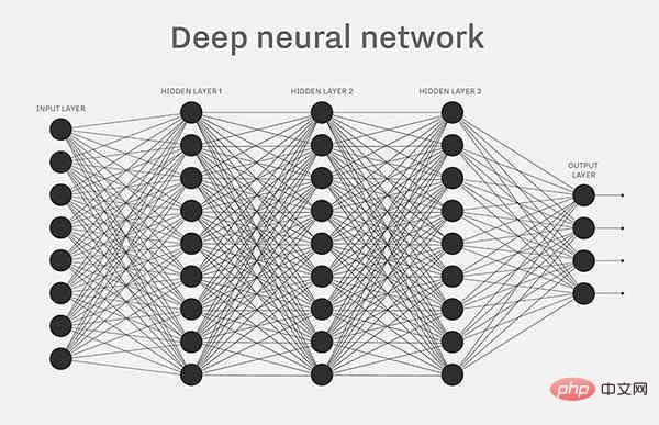 神经-3.jpg