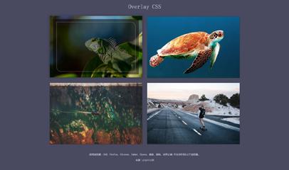 jQuery图片动画遮罩层lightbox特效