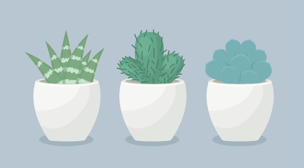 html5 svg绘制盆栽植物动画特效