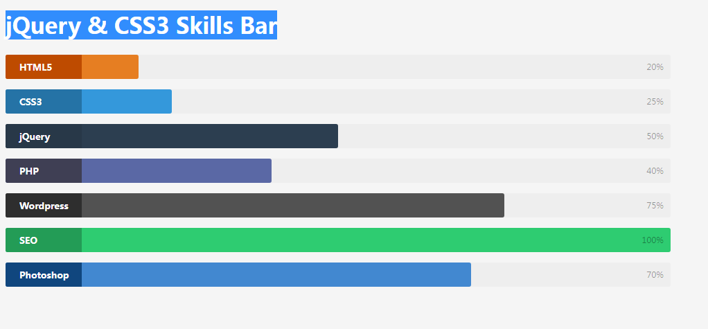 jQuery & CSS3 Skills Bar