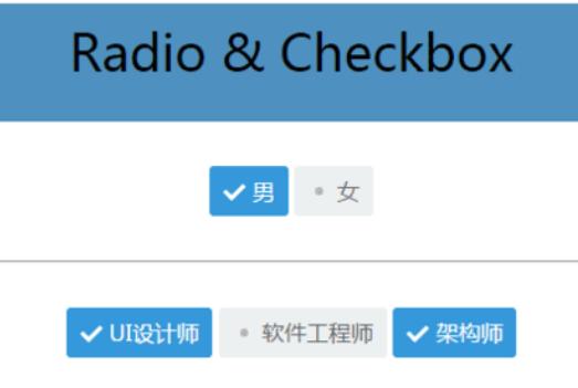 radio & checkbox