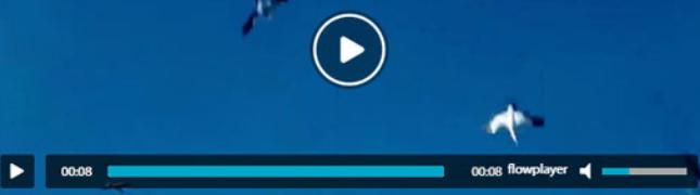 Flowplayer视频播放插件