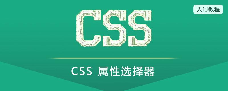 CSS 属性选择器