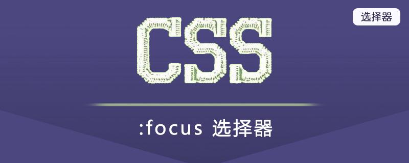 :focus 选择器