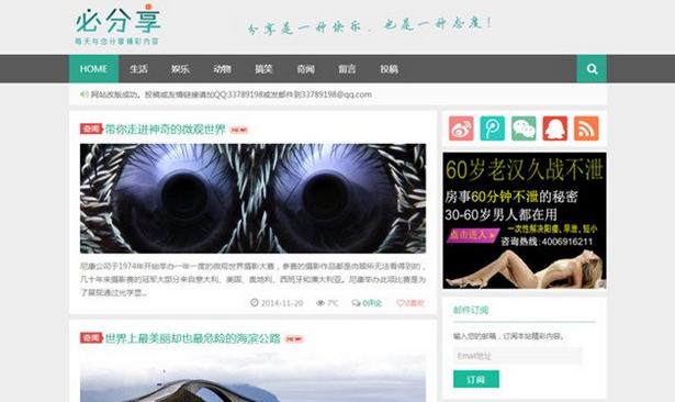 wordpress经典国外博客主题