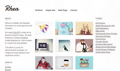 简洁平面设计师作品案例网站模板