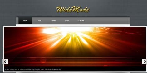 灰色简单服务动态网页模板