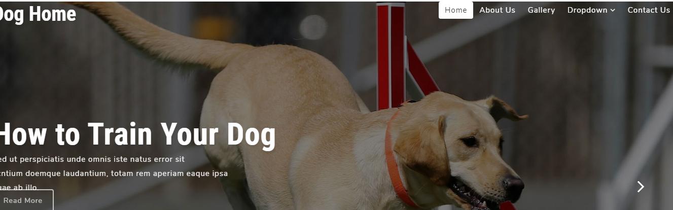 宠物医院整站html5网站模板