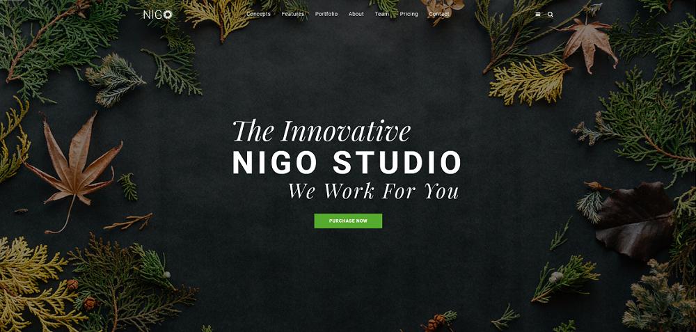 视差效果单页样式bootstrap模板-Nigo