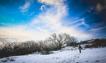 冬日旷野高清图片